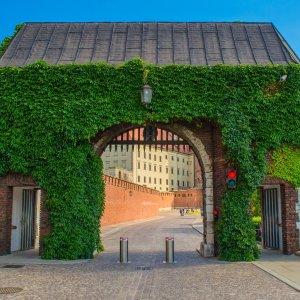 Pologne_Krakow_Château de Wawel (2)